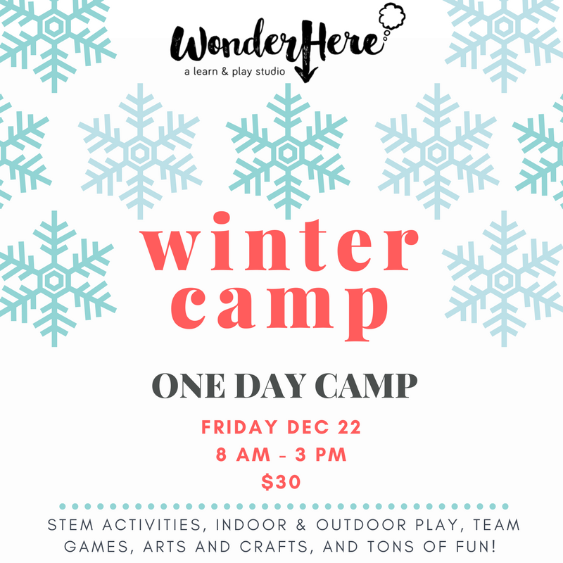 Winter Camp – One Day