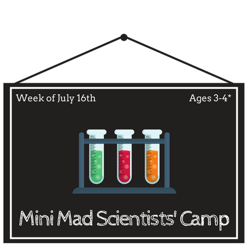 Mini Mad Scientists Camp