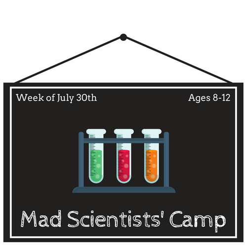 Mad Scientists Camp